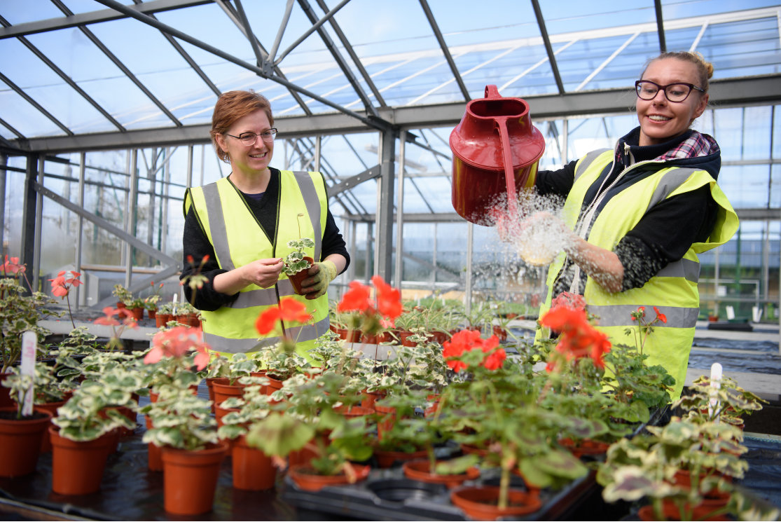 Hnc horticulture students watering can 1 gallery